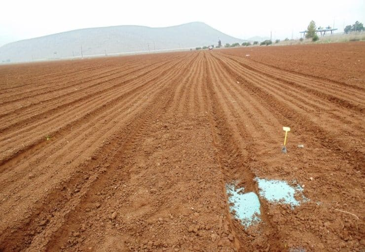 How to prepare the soil for potato planting